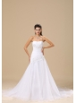 Appliques Decorate Bodice A-line Organza and Taffeta Simple Style Chapel Train 2013 Wedding Dress