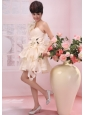 One Shoulder Handle-Made Flowers Organza 2013 Wedding Dress Champagne A-Line / Princess