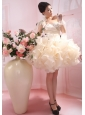 One Shoulder Ruffles Organza Column / Sheath Champagne Mini-length Wedding Dress