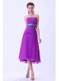 Purple Chiffon Green Belt Column Bridemaid Dress Tea-length