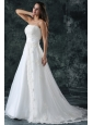 A-Line Straps Appliques Lace Up Tulle Wedding Dress with Court Train