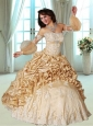 2015 Lovely Sweetheart Appliques Dresses for Quinceanera  in Champagne