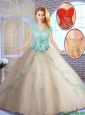 Summer Perfect Champagne Sweet 16 Dresses with Appliques