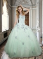 Discount Really Puffy Applique and Beaded Apple Green Quinceanera Dress