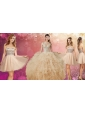 Elegant V Neck Ruffled Quinceanera Dress and Fashionable Sequined A Line Dama Dress in Champagne