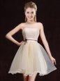 Flare Champagne Sleeveless Mini Length Lace Lace Up Quinceanera Court Dresses