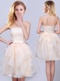 Most Popular Champagne Sleeveless Organza Lace Up Damas Dress for Prom and Party and Wedding Party