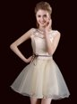 Champagne Organza Lace Up Scoop Sleeveless Mini Length Dama Dress Lace