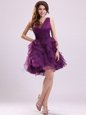 Discount Floor Length Zipper Homecoming Dress Purple and In for Prom and Party with Ruffles