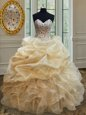 Hot Sale Sleeveless Lace Up Floor Length Beading and Ruffles Sweet 16 Quinceanera Dress