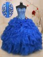 Baby Blue Sleeveless Organza Lace Up 15 Quinceanera Dress for Military Ball and Sweet 16 and Quinceanera