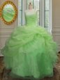 Designer Organza Lace Up Strapless Sleeveless Floor Length Sweet 16 Quinceanera Dress Embroidery and Pick Ups