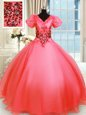 V-neck Short Sleeves Organza 15th Birthday Dress Appliques Lace Up