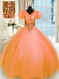 Enchanting Orange V-neck Neckline Appliques Ball Gown Prom Dress Short Sleeves Lace Up