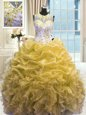 Edgy Sweetheart Sleeveless Organza Quince Ball Gowns Beading and Ruffles Brush Train Lace Up