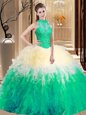 Beauteous Backless Organza Sleeveless Floor Length Ball Gown Prom Dress and Lace and Appliques and Ruffles