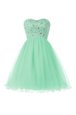 Sweetheart Sleeveless Lace Up Evening Dress Apple Green Tulle