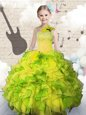 Ball Gowns Little Girl Pageant Dress Light Yellow Scoop Tulle Sleeveless Floor Length Zipper