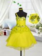 Sleeveless Beading and Appliques and Hand Made Flower Lace Up Child Pageant Dress