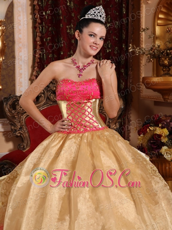 Popular Champagne Quinceanera Dress Strapless Organza Embroidery Ball Gown