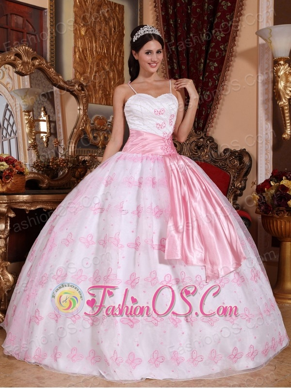 Pretty Light Pink Quinceanera Dress Spaghetti Straps Organza Embroidery Ball Gown