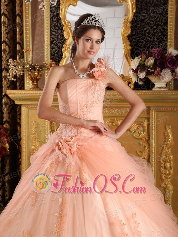 Pretty Light Pink Sweet 16 Dress One Shoulder Appliques Tulle Ball Gown