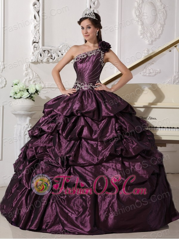 Fashionable Dark Purple Quinceanera Dress One Shoulder Taffeta Appliques and Pick-ups Ball Gown