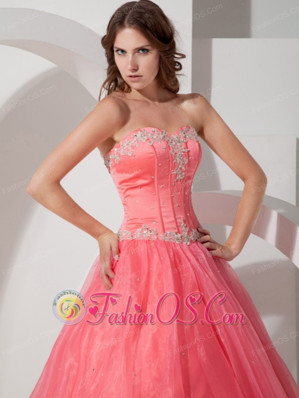 Beautiful Quinceanera Dress Floor-length Satin and Organza Appliques with Beading