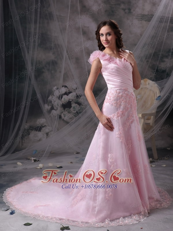 Pretty Baby Pink Princess V-neck Evening Dress Chiffon Appliques and Ruch Floor-length