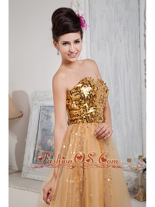 2013 Gold Custom Made Prom Dress / Celebrity Column Sweetheart Floor-length Tulle Sequins