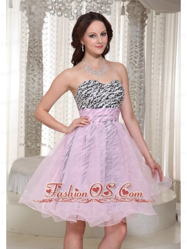 Make You Own 2013 Prom Dress With Organza Fabric and Zebra ...