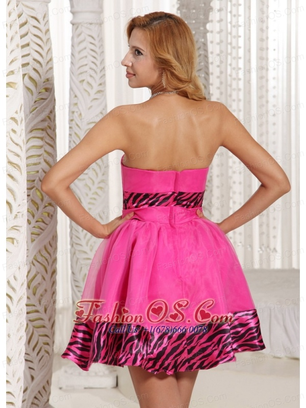 Stylish Zebra A-line Mini-length 2013 Prom Dress With Hot Pink ...