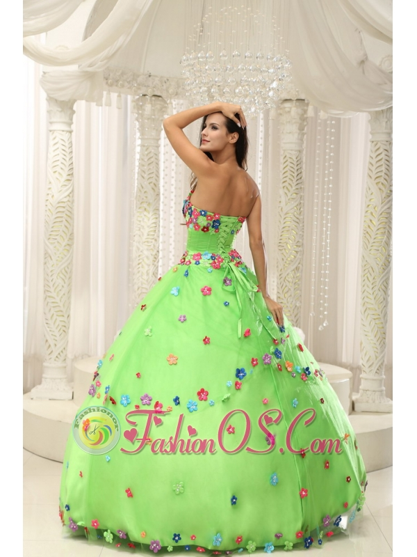 Spring Green Ball Gown 2013 Quninceaera Gown For Custom Made Appliques Decorate Bodice