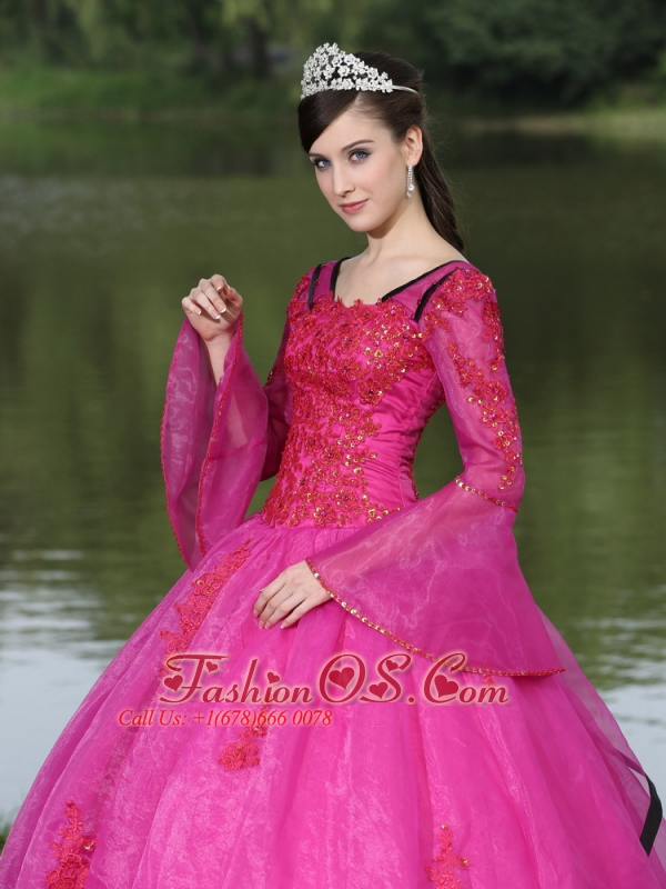 The Most Popular Long Sleeves Appliques Decorate Fuchsia Quinceanera Dress With V-neck