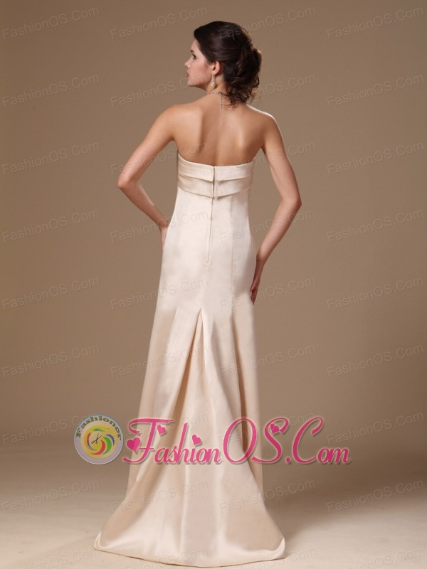 Satin Champagne Strapless Column Brush Simple Prom Gowns In Alexander City Alabama