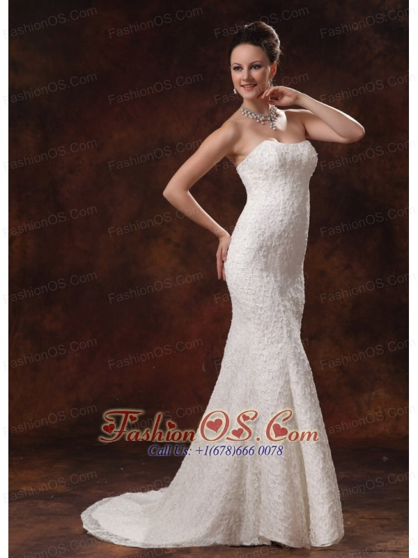 2013 wedding dress for custom made lace mermaid brush for Wedding dresses albany ga