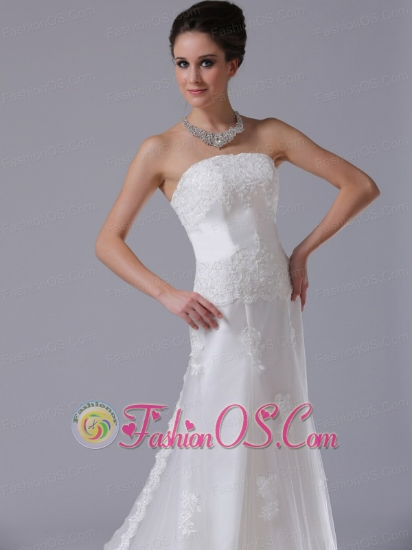Strapless Lace Column Tulle Court Train 2012 Romantic Wedding Dress In Ames Iowa