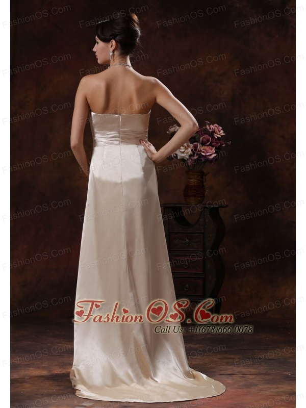 Champagne brush train mother of the bride dress in for Wedding dresses montgomery al