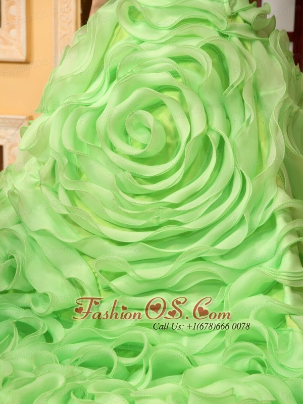 Beading Rolling Flowers One Shoulder A-Line Organza Chapel Train Spring Green Quinceanera Dress