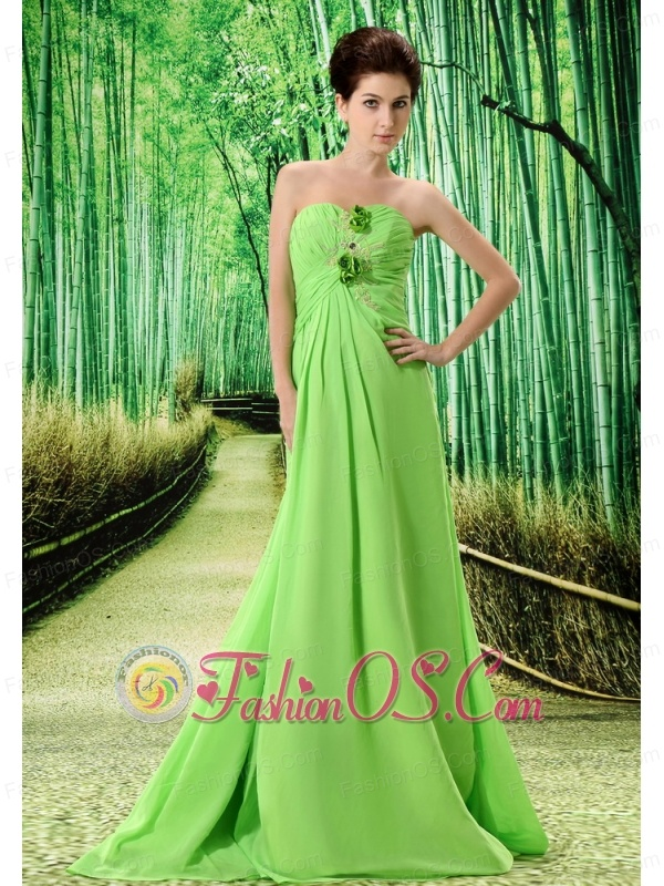 Spring Green Stylish El Tigre Prom Dress Hand Made Flower and Ruch