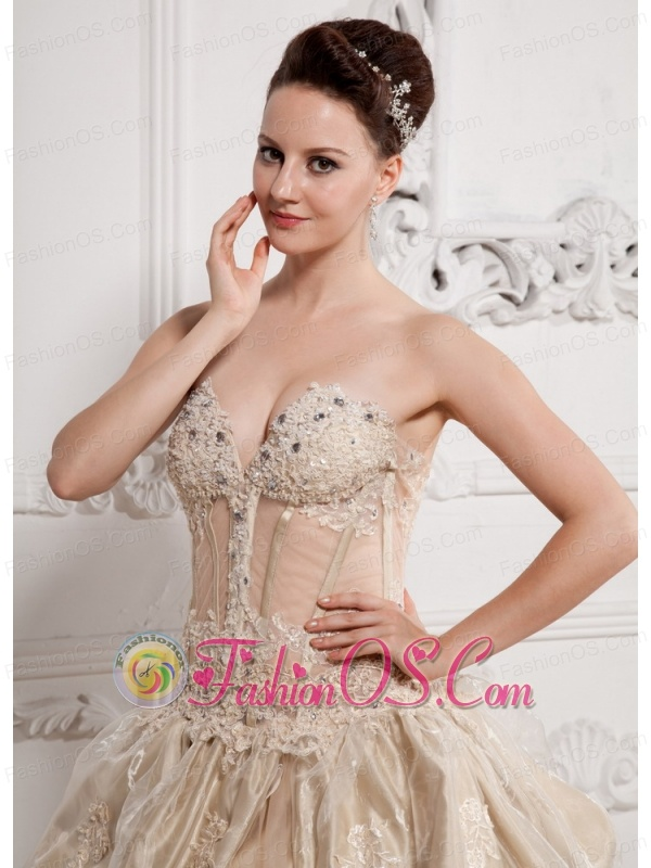 Champagne Sweetheart Lace and Beading Wedding Dress With Taffeta and Organza