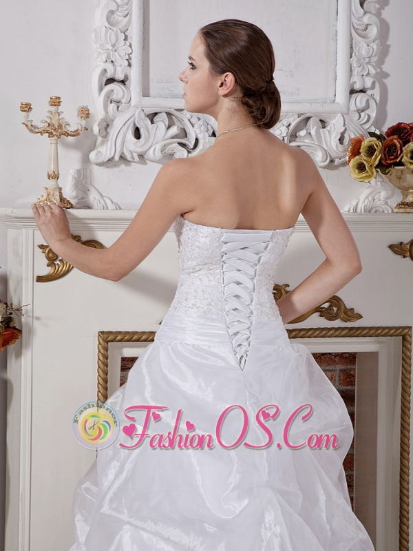 Organza Wedding Dress With Lace Bodice and Pick-ups