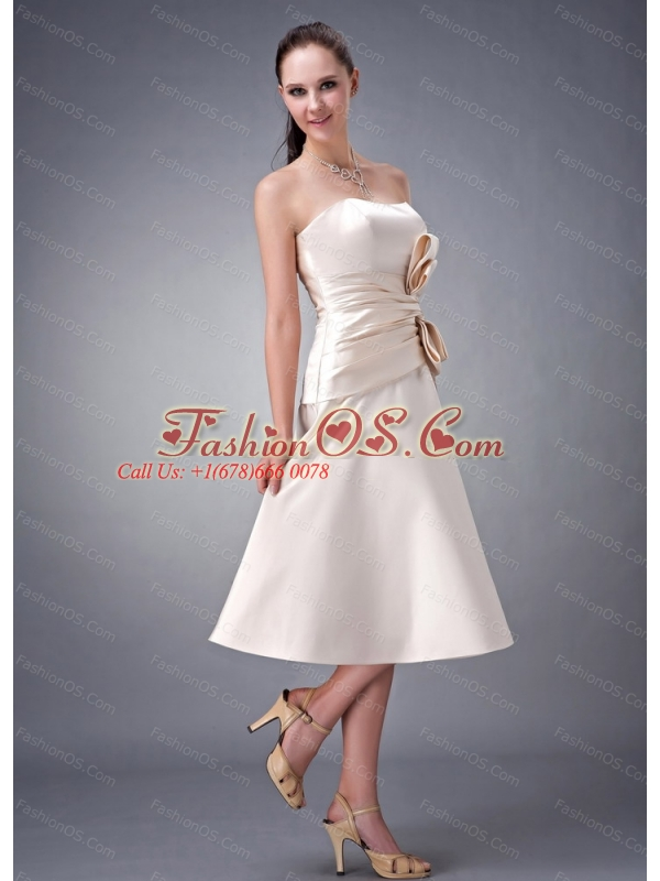 Champagne A-line / Princess Strapless Dama Dresses for Quinceanera