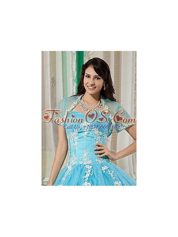 Elegant and Affordable Aqua Blue Quinceanera Jacket with Appliques For 2014