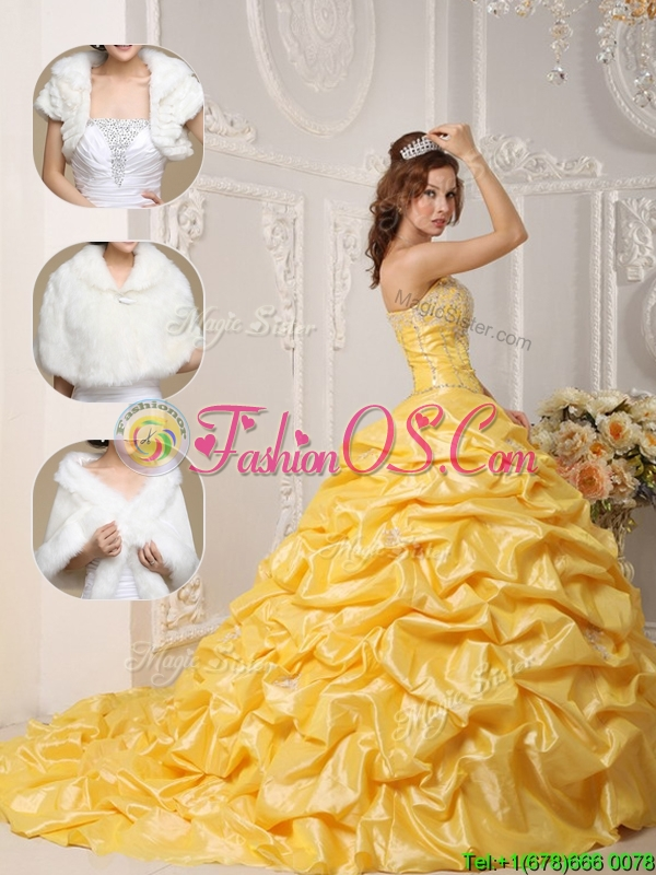 Perfect  Court Train Quinceanera Gowns with Pick Ups and Appliques
