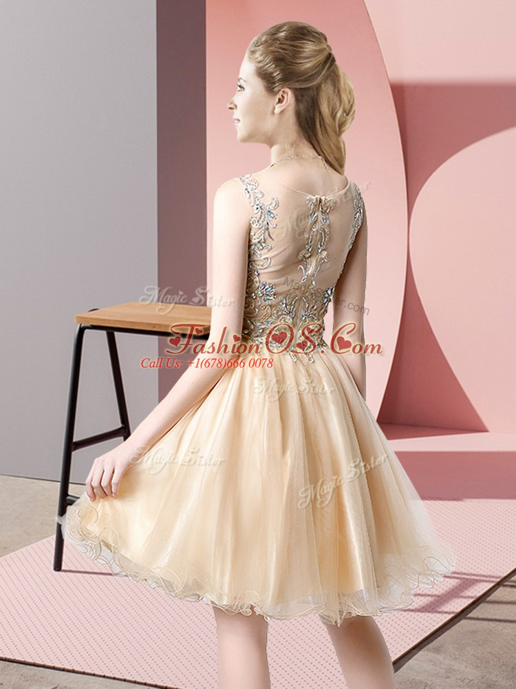 A-line Homecoming Dress Lilac Scoop Tulle Sleeveless Knee Length Zipper